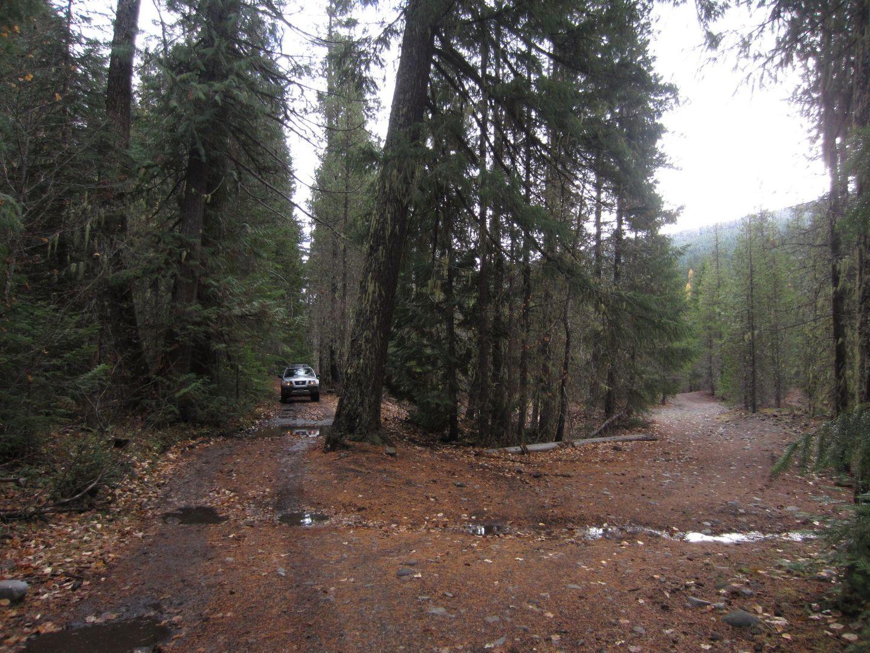 Barlow Trail - Waypoint 24: Go Straight
