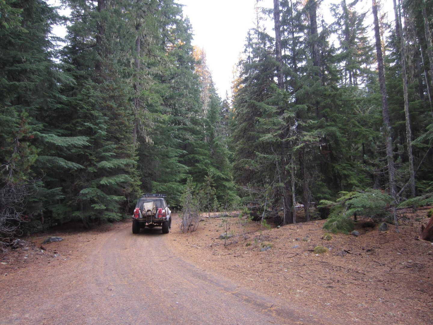 Barlow Trail - Waypoint 35: Continue Straight