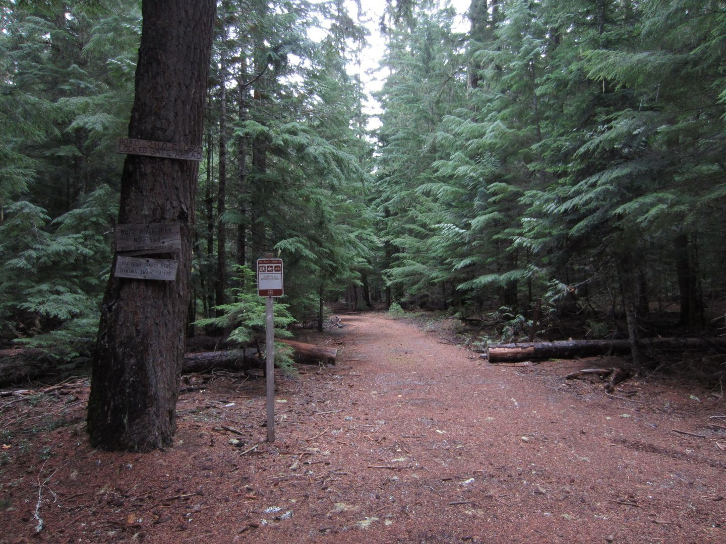 Barlow Trail - Waypoint 38: Continue Straight