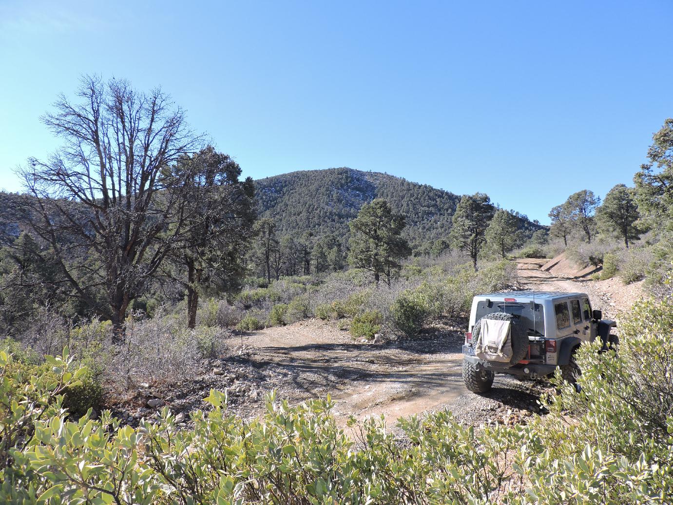 Highlight: Lovell Summit Road