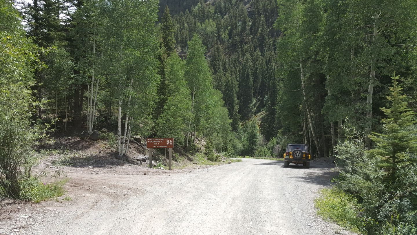 Engineer Pass - Waypoint 30: Intersection with Nellie Creek (CR 23)