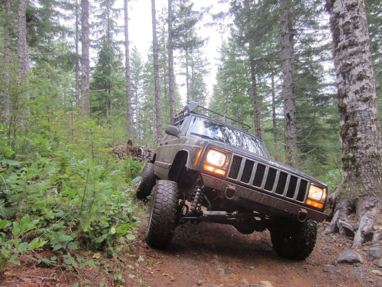 Highlight: Hoodraiser / Tillamook State Forest