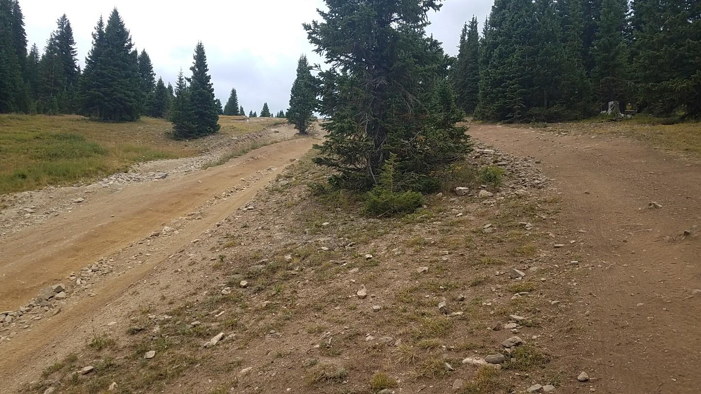 Georgia Pass - Waypoint 15: Trail Braiding