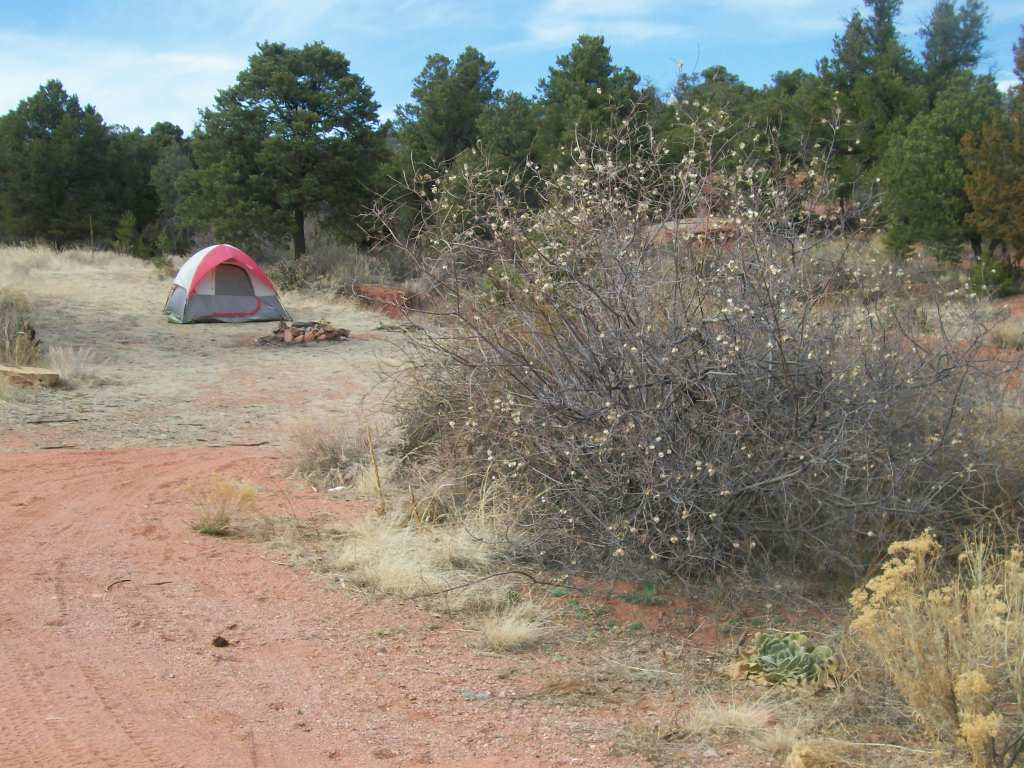 Camping: Seep Springs OHV Area- BLM Road 5830