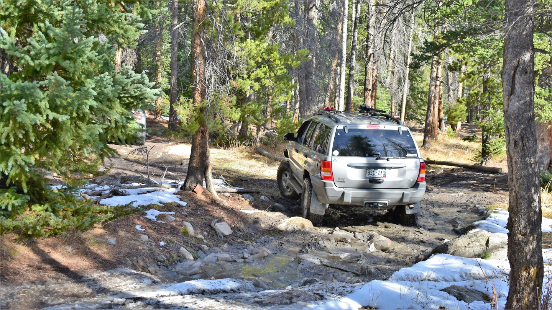 Green Ridge Trail - Waypoint 3: Take Left Path