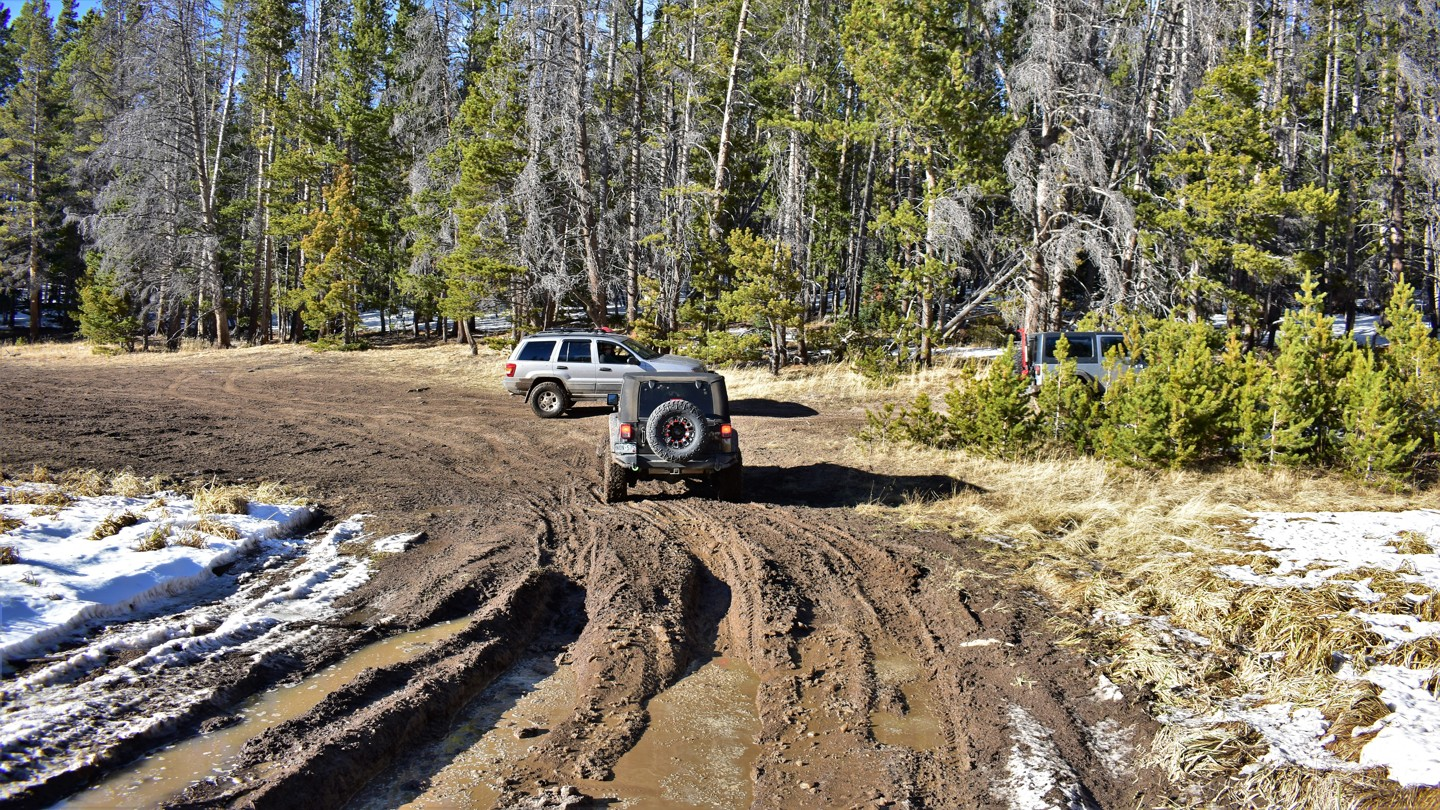 Green Ridge Trail - Waypoint 11: USFS #177A Intersection - Go Right