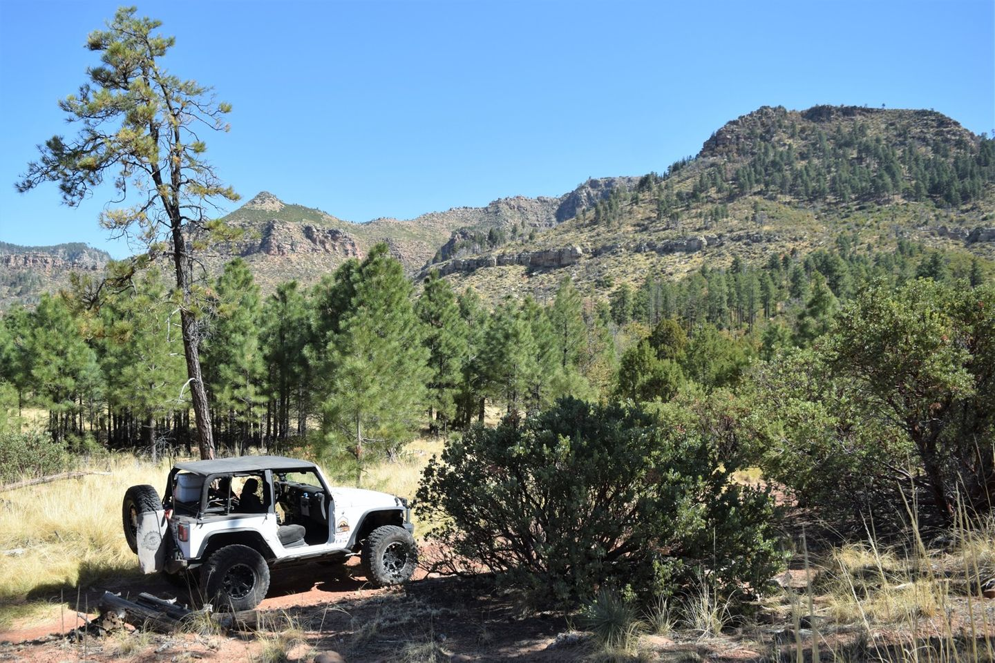 Highlight: FR 195 - Tonto National Forest