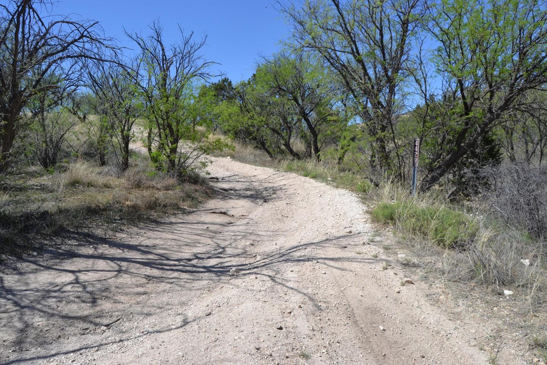 Redington Pass - Waypoint 27: FR#4429 (Stay Right)