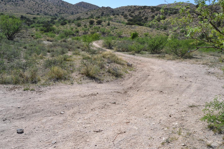 Redington Pass - Waypoint 31: Camp Spot # 9 (Stay Right)