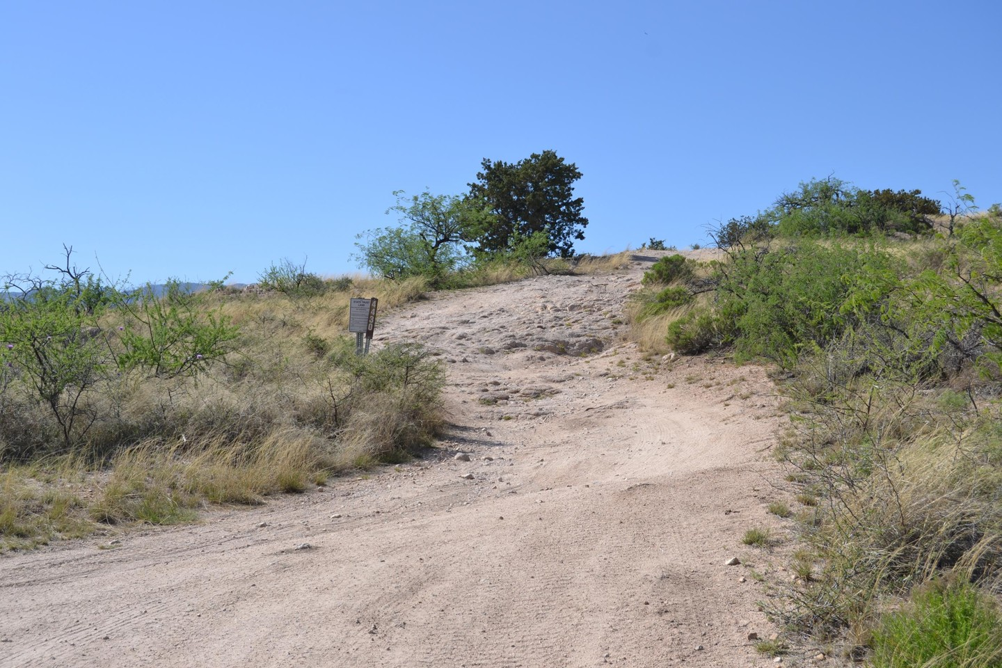 Redington Pass - Waypoint 35: East End Chimney Rock Trail FR# 4430 (Stay Right)