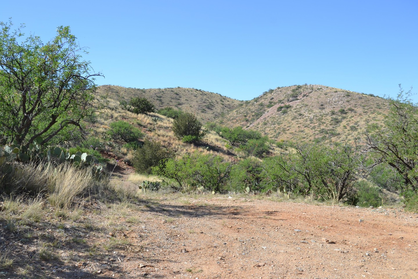 Redington Pass - Waypoint 38: Two Dead End 4x4 Roads -East & West, Un-numbered (Continue Straight)