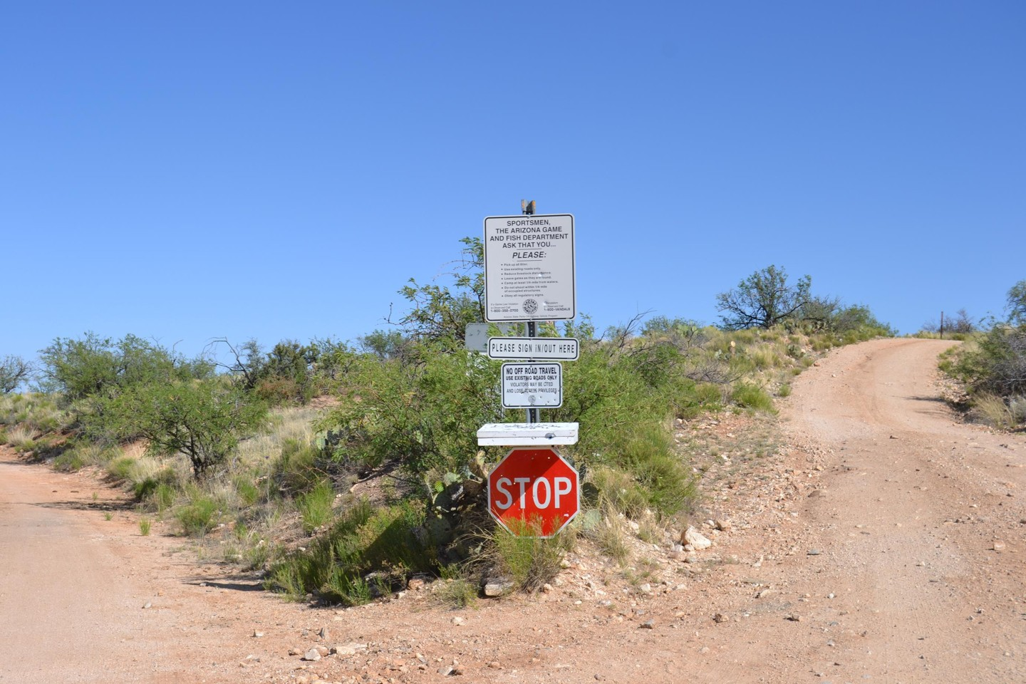 Redington Pass - Waypoint 40: Large Trail Intersection Unknown Road# to BarLY Ranch (Stay Left)