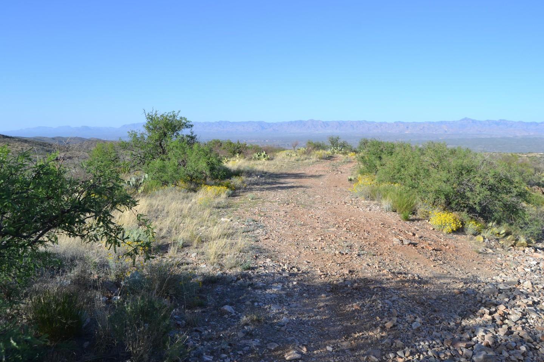 Redington Pass - Waypoint 33: Camp Spot #11 (Stay Right)