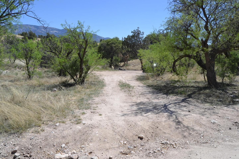 Redington Pass - Waypoint 22: Large Camp spot #4 (Stay Left)
