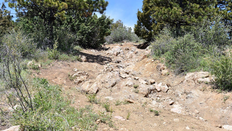 Kelly Flats - Waypoint 5: Aneurysm Hill