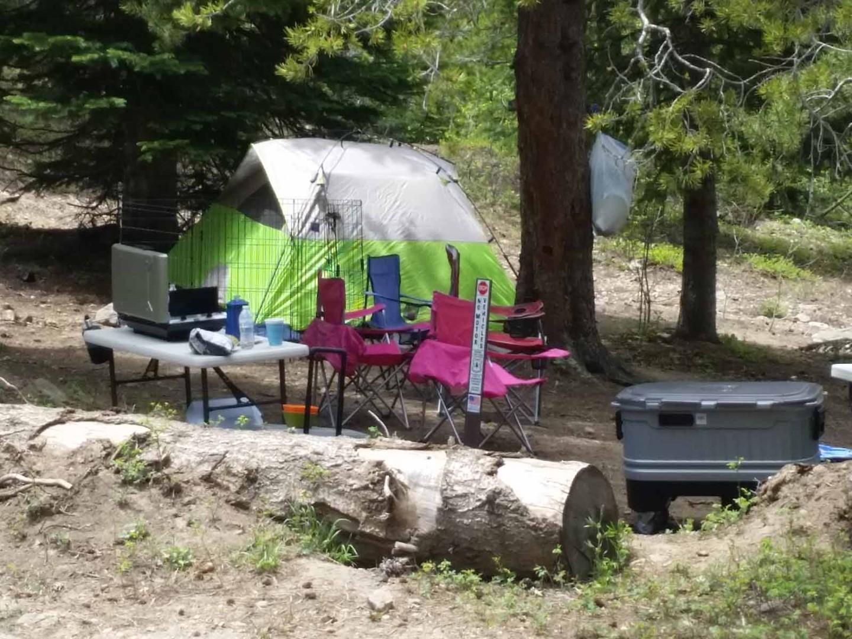 Camping: Kingston Peak