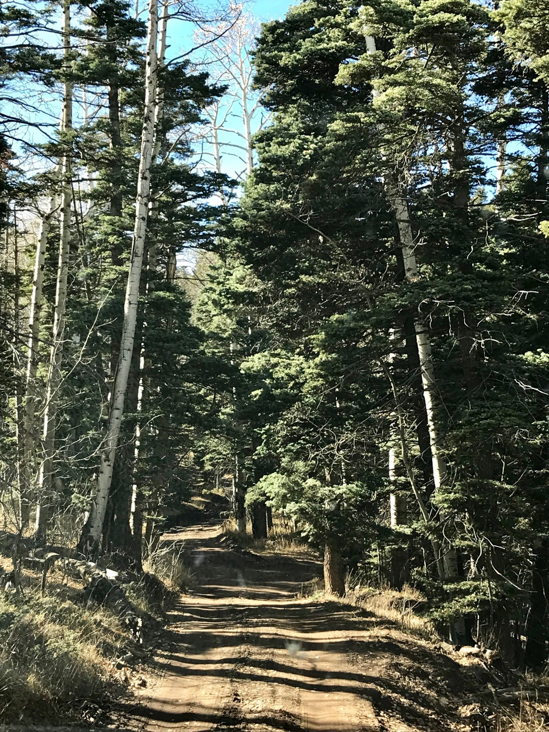 Trail Review: Medano Pass