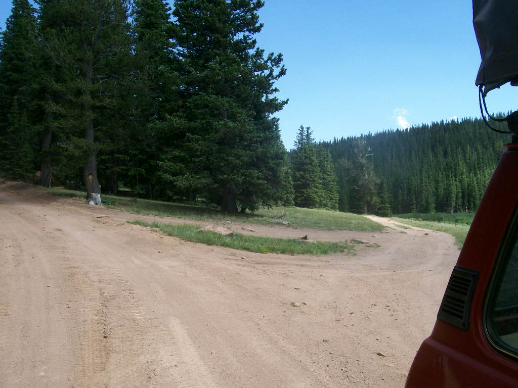 Mount Baldy - Waypoint 7: Intersection FS Road 370C