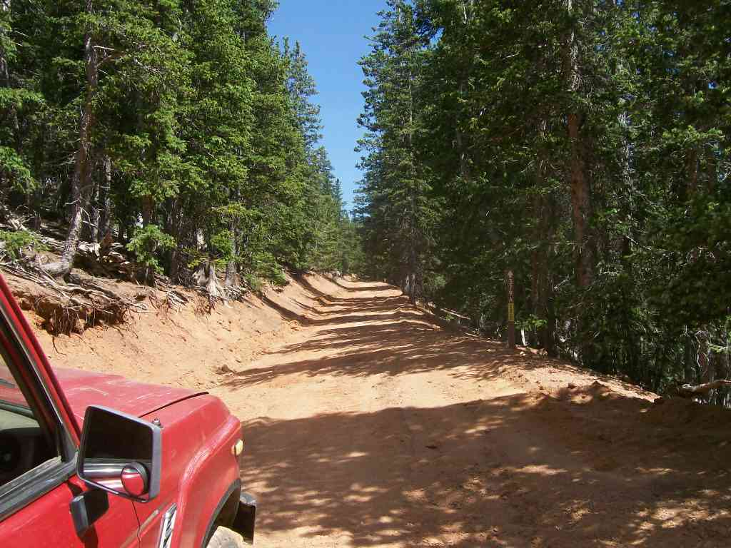 Mount Baldy - Waypoint 8: Intersection FS Road 379A