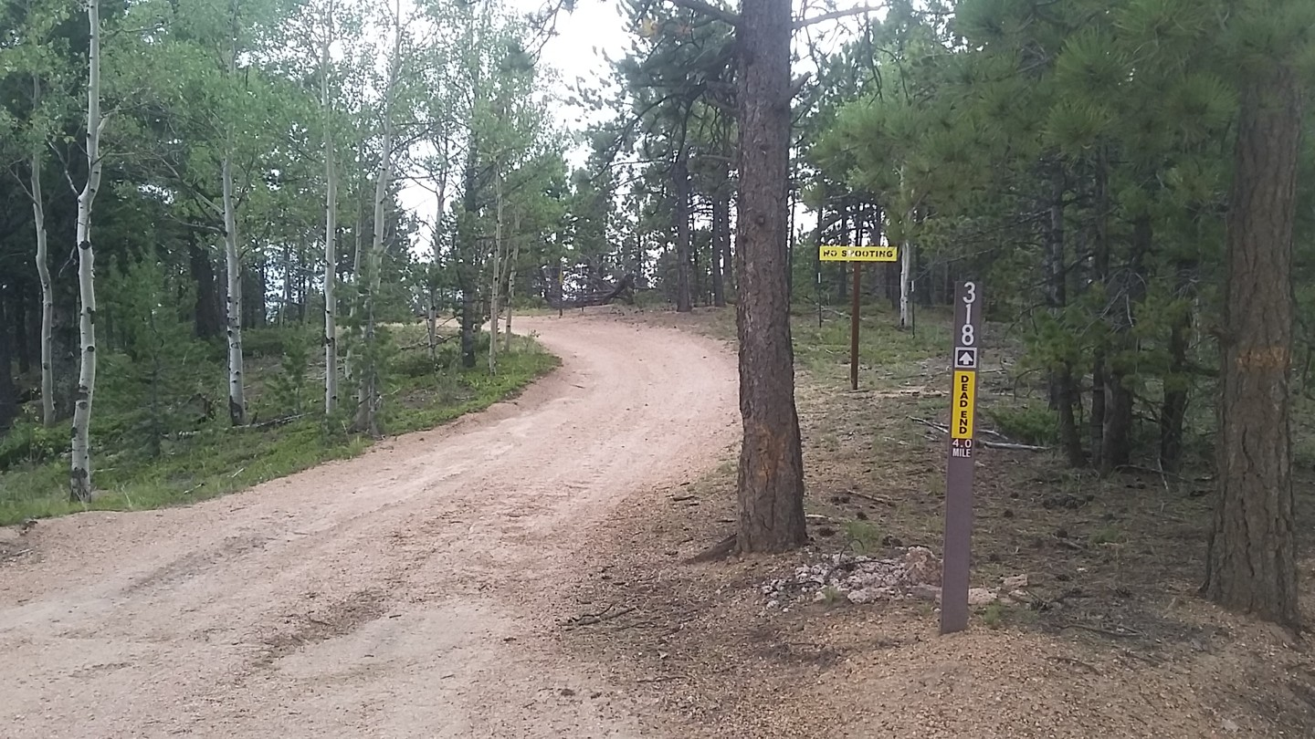 Mount Herman Road - Waypoint 5: Intersection 318 - Stay Straight
