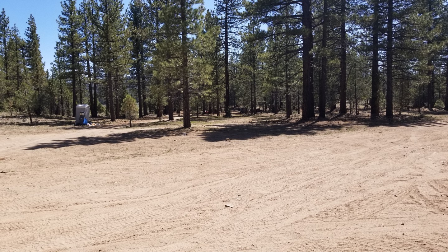 Highlight: Holcomb Valley Dispersed Camping Area