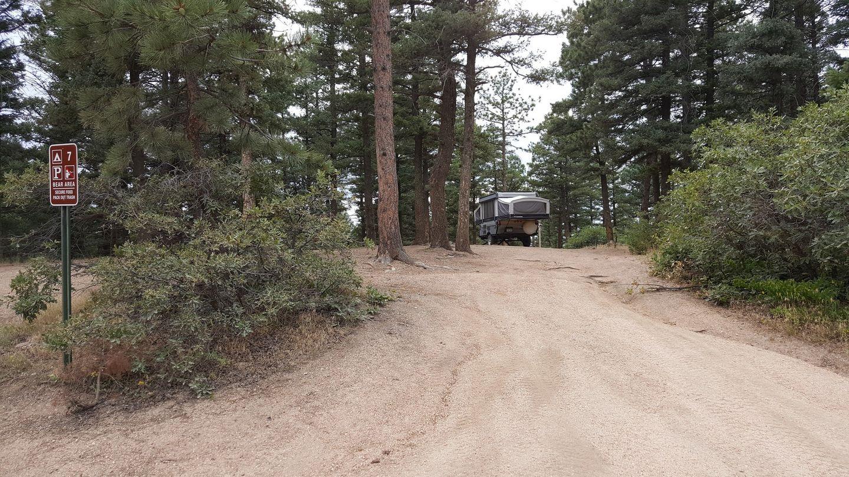Camping: Rampart Range Road