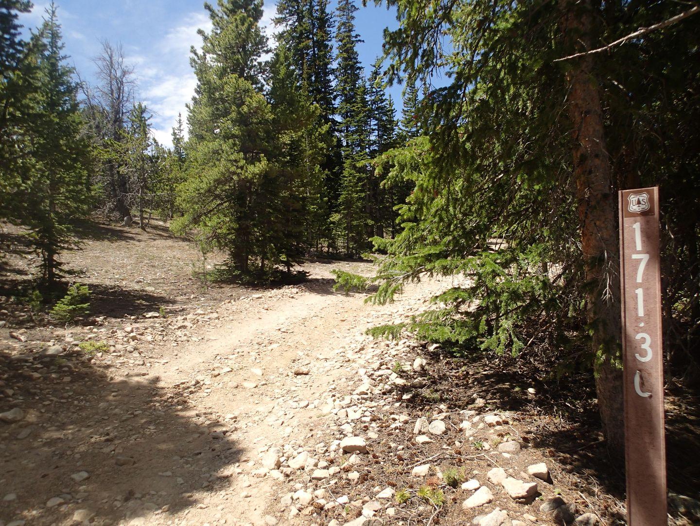 Red Elephant Hill - Waypoint 21: Mill Creek Trailhead