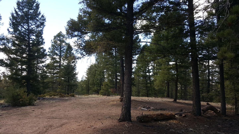 Camping: Rule Ridge