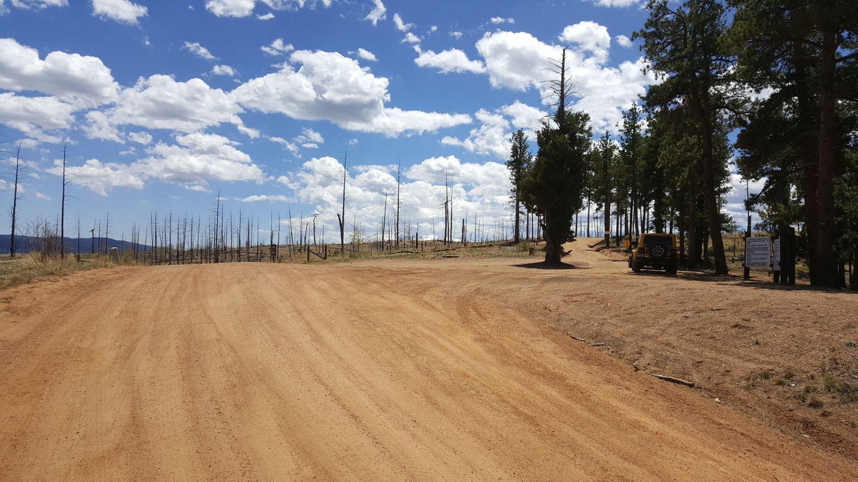 Rule Ridge - Waypoint 1: Rule Ridge/Creek FS 357 Trailhead