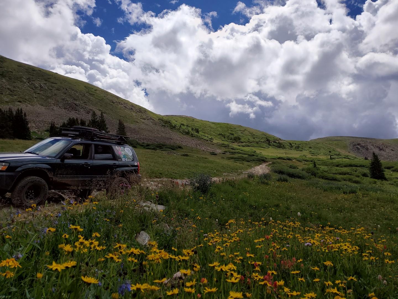 Trail Review: Saints John
