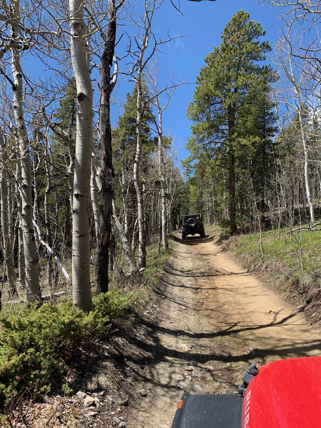 Trail Review: Slaughterhouse Gulch