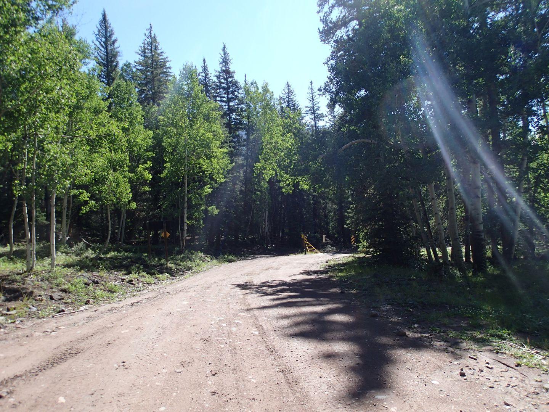 Stony Pass - Waypoint 26: Lost Creek Hiking Trail