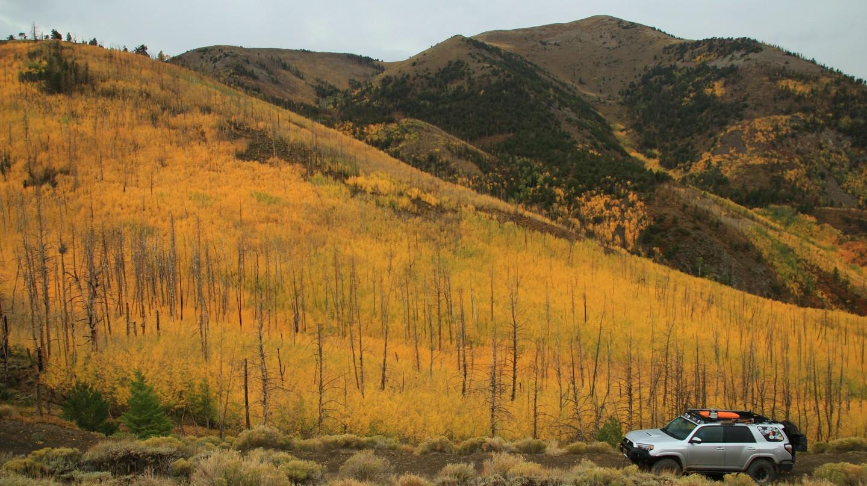 Highlight: Bull Creek Pass