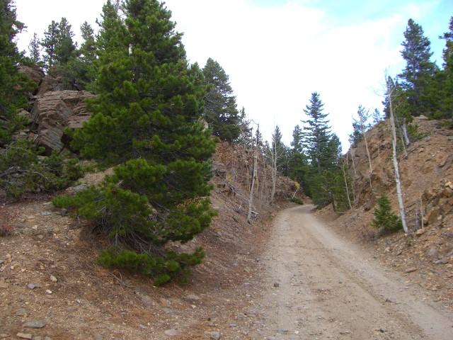 Switzerland Trail - Waypoint 2: Early Trail