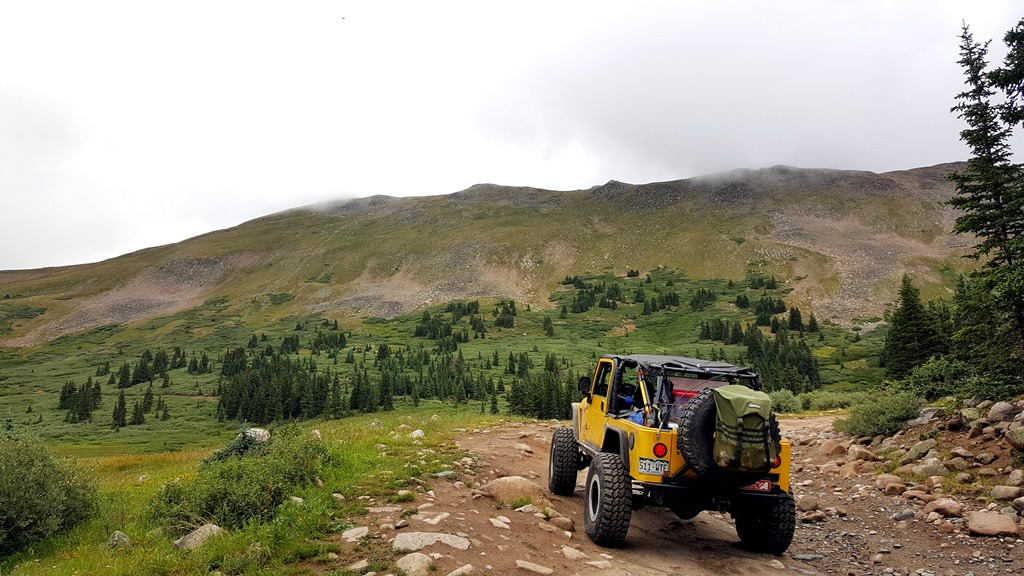 Tincup Pass - Waypoint 6: Hit Tree Line