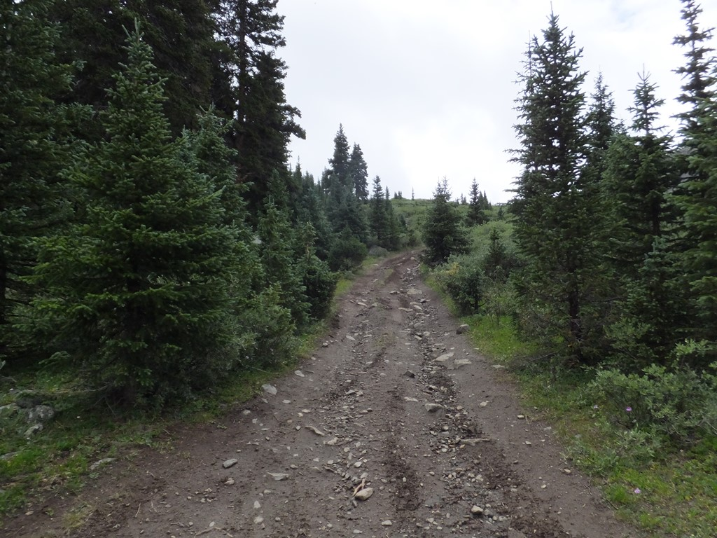 Tincup Pass - Waypoint 9: Unknown Road