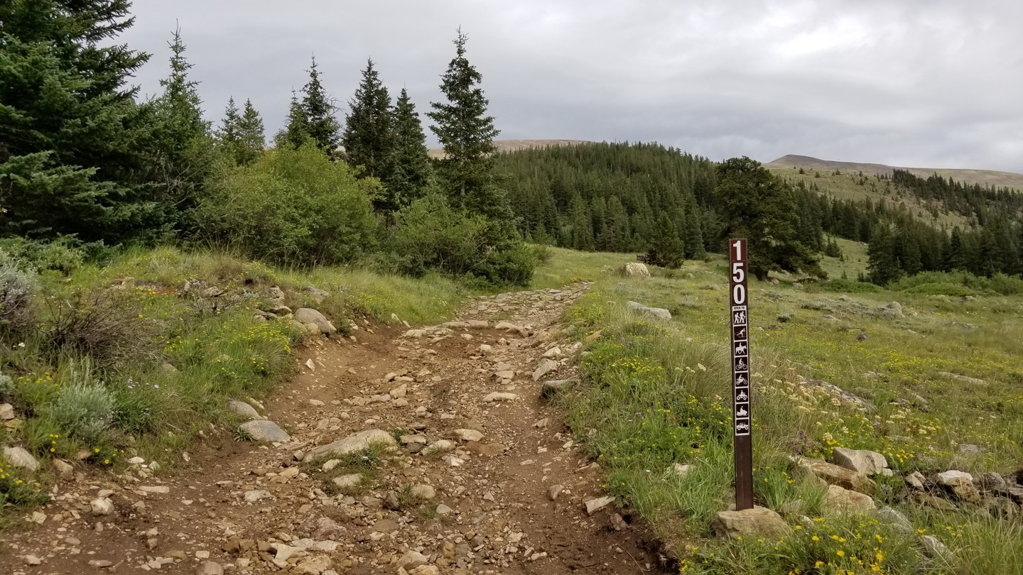 Weston Pass - Waypoint 11: FSR 150 - Stay Right / Southeast