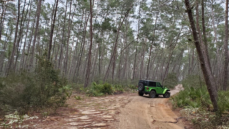 Highlight: Tread Lightly! Four Wheel Drive Way