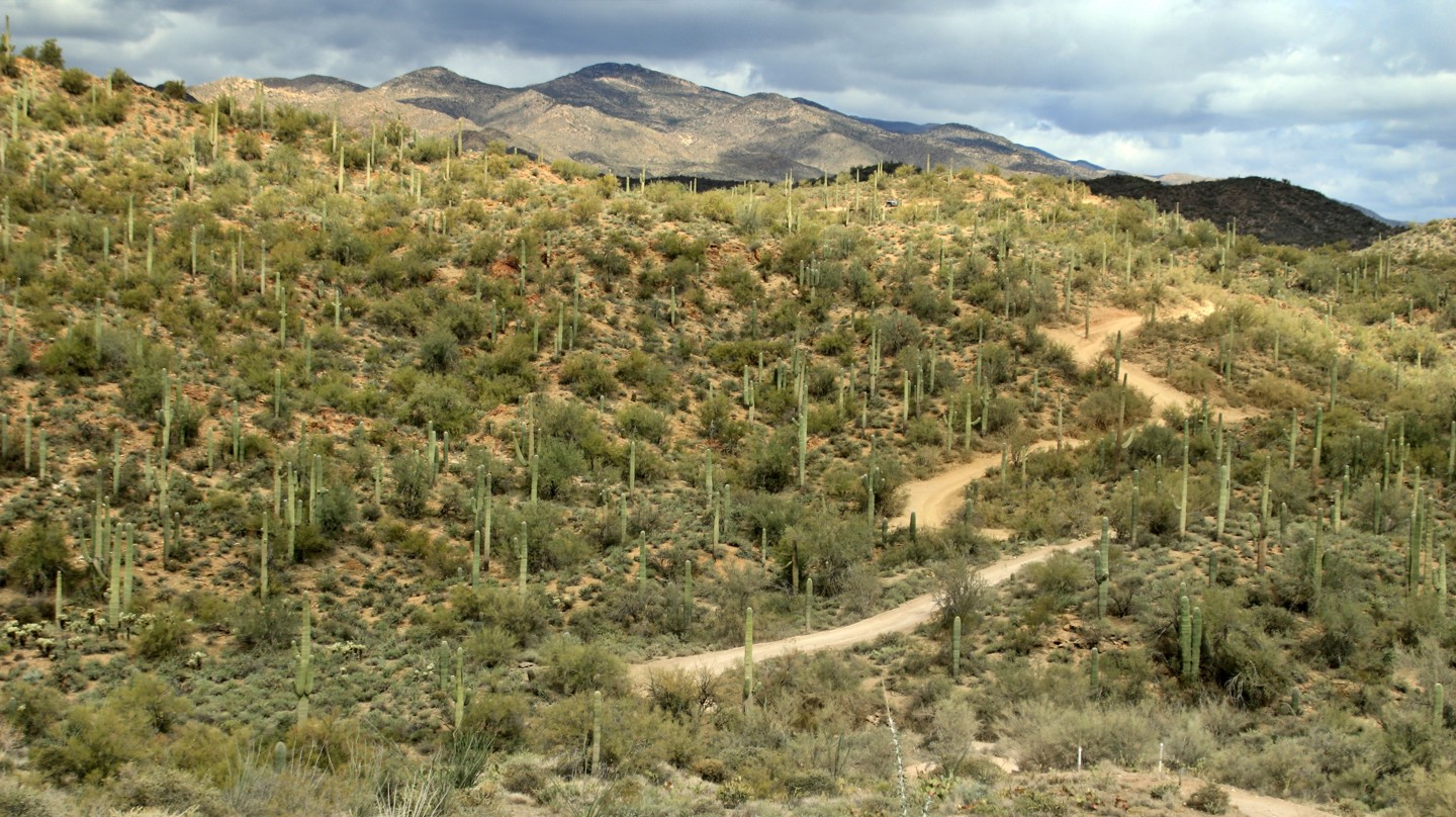 Highlight: Old Black Canyon Highway