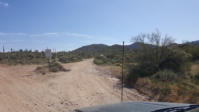 Trail Review: Cottonwood Canyon Road