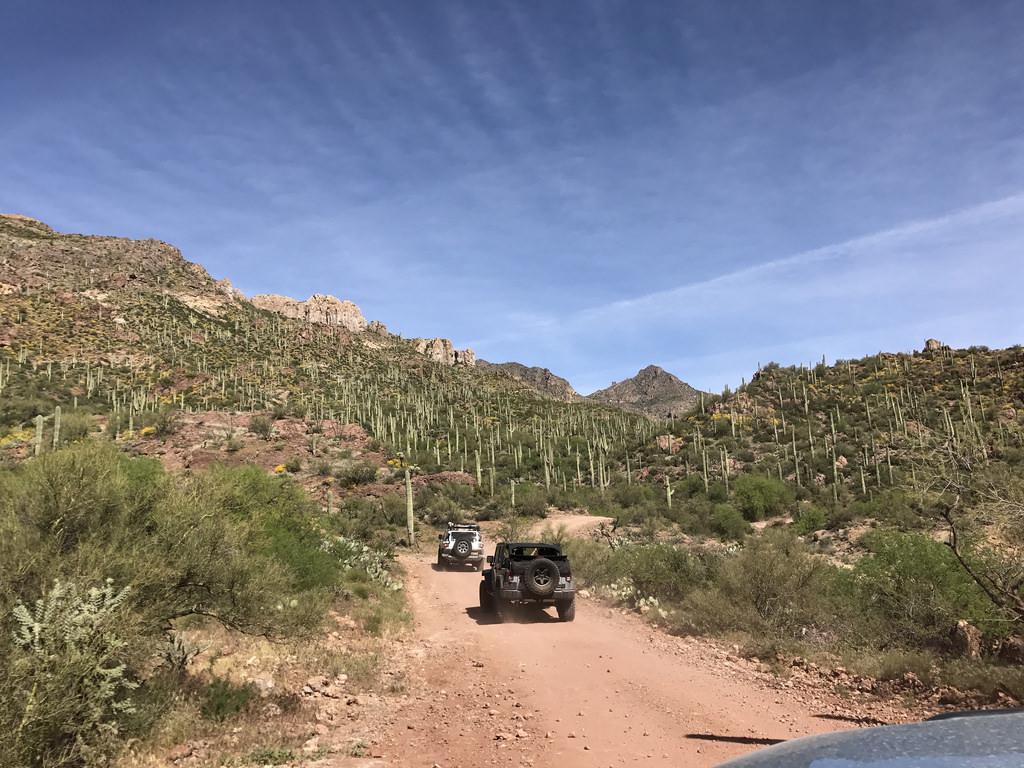 Trail Review: Montana Mountain