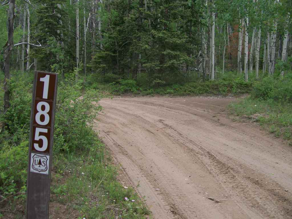 Aspen Ridge - Waypoint 13: Intersection Unmarked Road