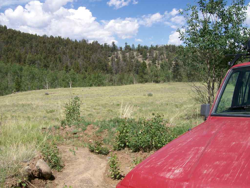 Aspen Ridge - Waypoint 9: Aspen Meadow