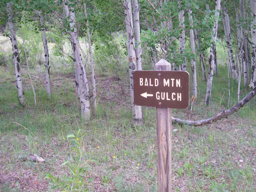 Bald Mountain Gulch - Waypoint 7: Intersection FS Road 300A