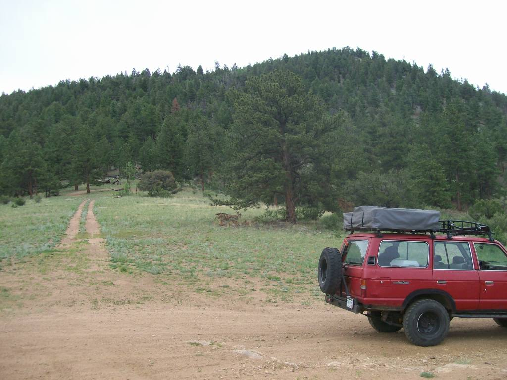 Bald Mountain Gulch - Waypoint 9: Camping Ridge