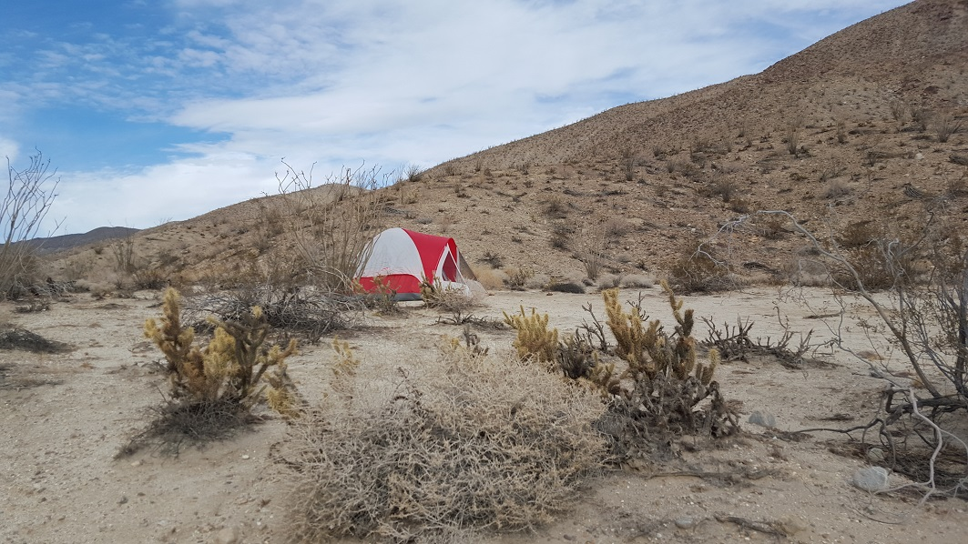 Camping: Fish Creek Trail - Anza Borrego
