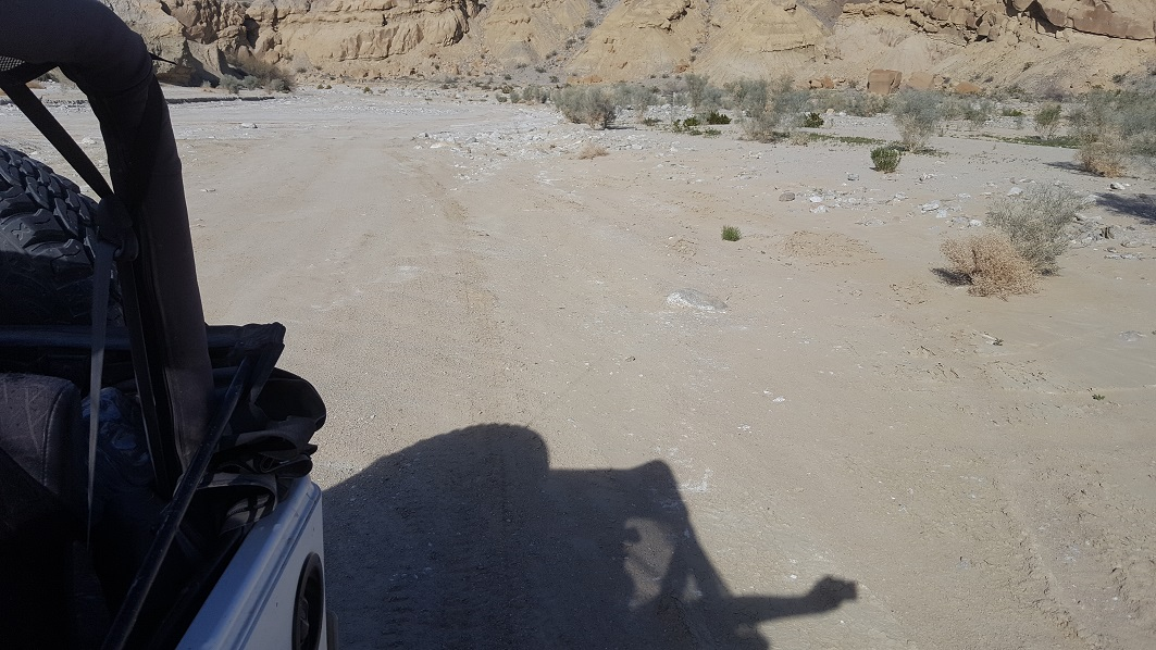Fish Creek Trail - Anza Borrego - Waypoint 6: Elephant Knees