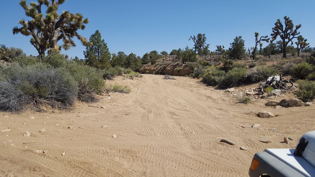 Rattlesnake Canyon - RC3331 - Waypoint 6: Motino Wash End