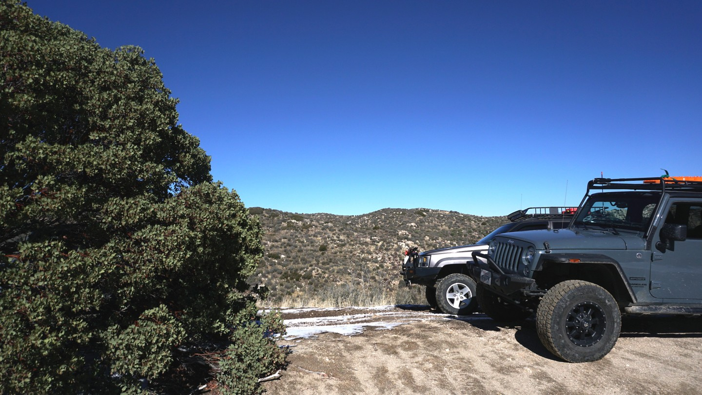 3N34 - Willow Creek Jeep Trail - Waypoint 26: 3N34X Lookout Tree
