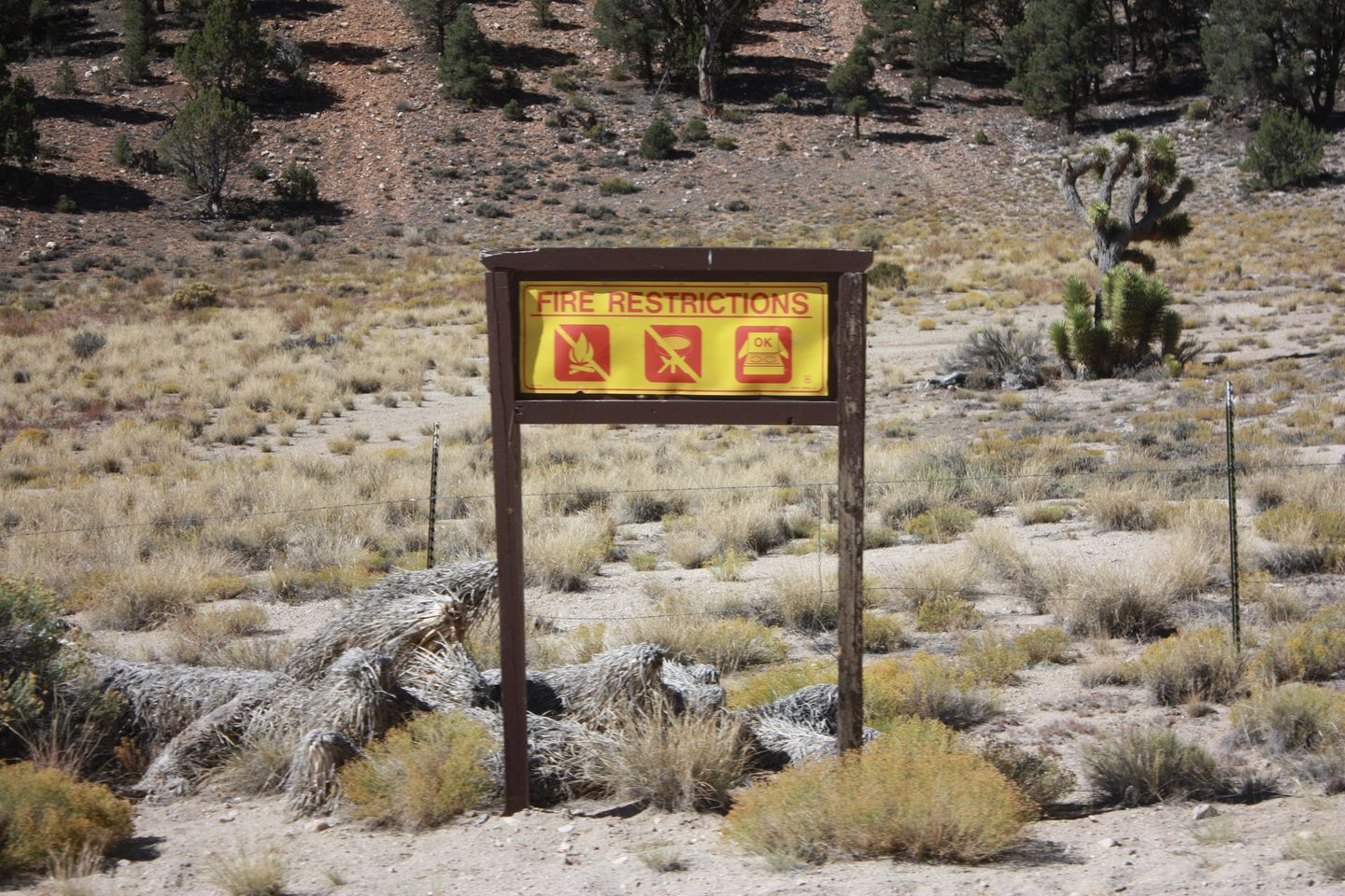 Camping: 2N02 - Burns Canyon